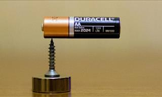 This Magic Trick Reveals How to Make A Homopolar Motor