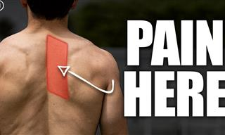 These Tips Will Provide Relief from Shoulder Blade Pain