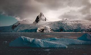 These Pics Bring out Antarctica's Luminescent Qualities