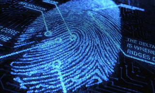 Determining Personality Traits From Fingerprint Types