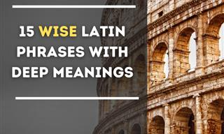These Latin Phrases Are Filled With Such Great Wisdom
