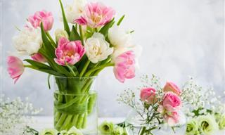 These Simple Tips Will Prolong the Life of Your Bouquet