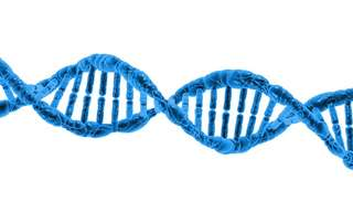 How Much Do You Know About Your DNA?