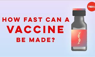 Watch To Know What It Takes To Develop a New Vaccine