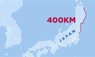 Can This Tsunami Shield Protect Japanese Cities?