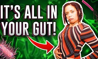 Did You Know That Your Gut Bacteria Controls Your Mood?