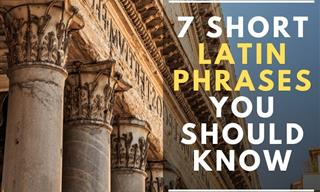 7 Short Latin Phrases Everyone Should Know