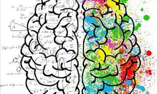 Find Out Which Area of Your Brain Is Most Dominant