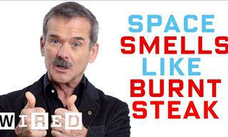 Astronaut Chris Hadfield: Debunking Space Myths