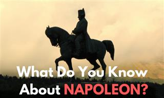 QUIZ: What Do You Know About NAPOLEON?