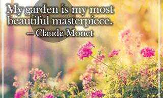 Quotes for Inspired Gardening