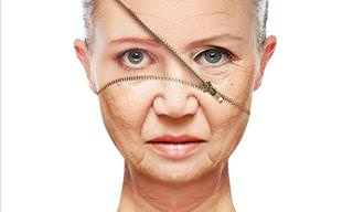 Could We Stop the Aging Process?