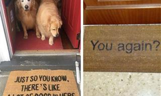 A Doormat Can Say Much More Than 'Welcome' - 15 Funny Photos