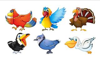Personality Test: What Bird Are You?