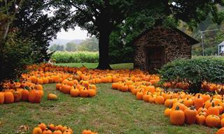 11 Best Towns to Visit This Halloween Holiday