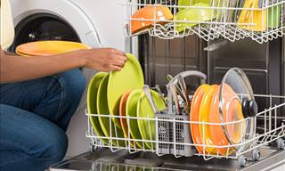The Bacteria and Fungi in Your Dishwasher
