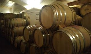 A Tour Through Wine-Making at a Grover Zampa Vineyard
