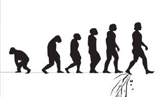 20 Pictures That Show the Comedic Alternative of Evolution