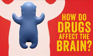 How Do Drugs We Take Affect Our Brain?