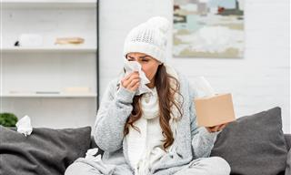 Winter Allergies: Causes and Efficient Solutions