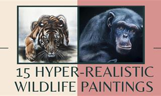 These Hyper-Realistic Wildlife Paintings Are Extraordinary