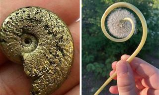 16 Small Treasures People Found by Chance