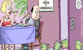 Hilarious Cartoons!