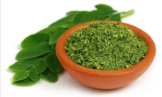 Moringa: The Herb That Can Stop Cancer?
