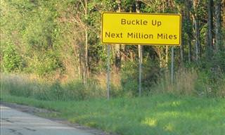 15 Odd Road Signs