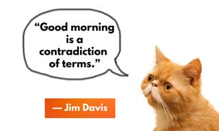 Hate Waking Up Early? Then You Will Love These Quotes