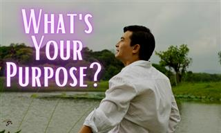 Test Yourself: What Is Your Superior Purpose in Life?