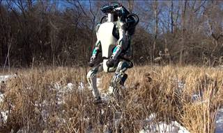 Watch: This New Generation Of Robot Will Blow You Away