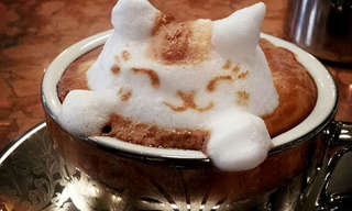 The Incredible Latte Art of Kazuki Yamamoto!