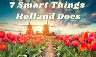 7 Interesting Facts About the Netherlands