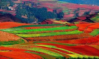 The Breathtaking Red Lands of China