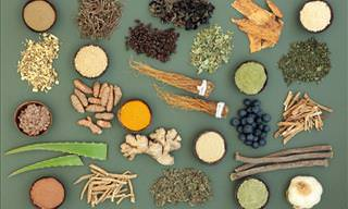 Guide to Adaptogens: Herbs and Spices That Fight Stress