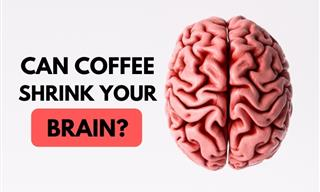 WARNING! Drinking Too Much Coffee Can Hurt Your Brain