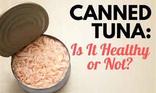 Canned Tuna: Is It Healthy or Not?