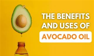 Avocado Oil - Noteworthy Health Benefits & How to Make It
