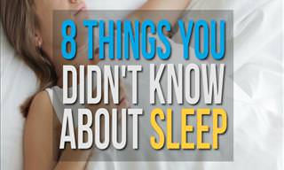 8 Fascinating Secrets of Sleep
