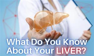 QUIZ: What Do You Know About Your LIVER?