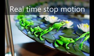 Unbelievable - Optical Illusion Makes Frog Sculptures Jump