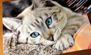 14 Remarkable Cat Drawings by Haruki Kudo