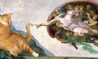 The World's Best Paintings Get a Cat Make-Over.