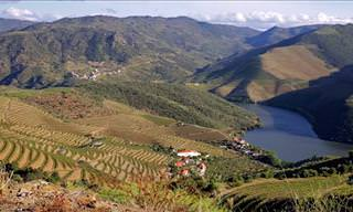 Explore the Douro Valley from the Sky