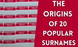 The Fascinating Origins of 20 Popular Last Names