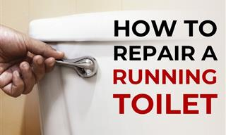 Repair a Running Toilet in No Time With These 4 Tips
