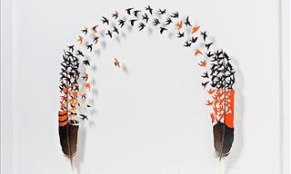 Chris Maynard's Outstanding Feather Art