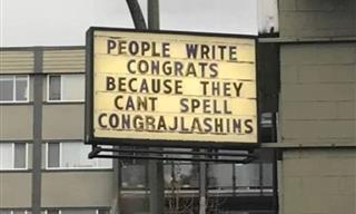 These 15 Signs Are Beyond Funny!