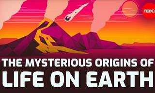 The Great Scientific Mystery: How Did Life on Earth Begin?